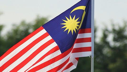 Malaysian Flag 02