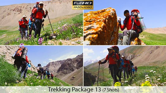 Cover Image for Group Of Young Friend Hiking in Mountain
