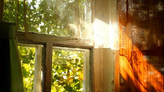 Village House Window