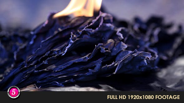 Thumbnail for Burning Paper  26