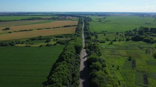 Thumbnail for Aerial View Road With Trees Near Field