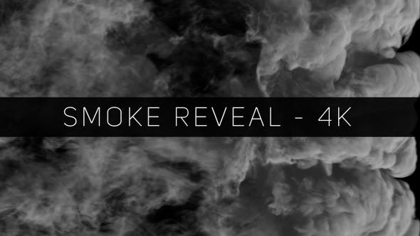 Thumbnail for Smoke Transition & Reveal - 4K