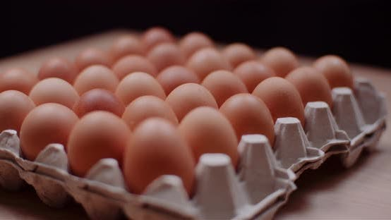 Thumbnail for Eggs Extruder Full of Fresh Eggs on Black Background
