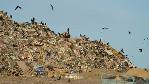Concept of Modern Society of Consumption and Environmental Pollution on Dump