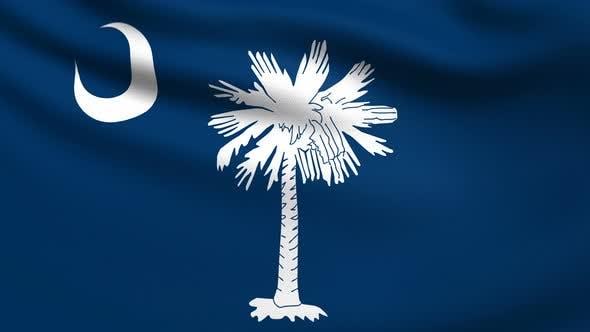 South Carolina Flag 4K