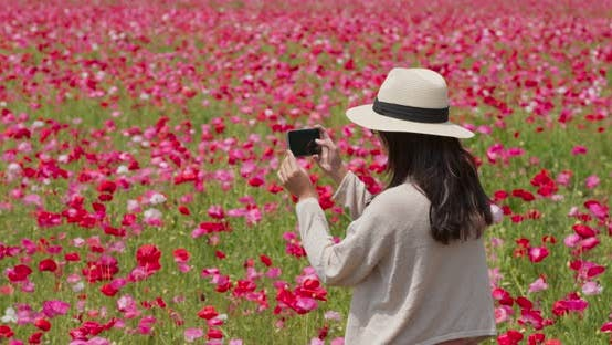 Thumbnail for Woman take photo on poppy flower field
