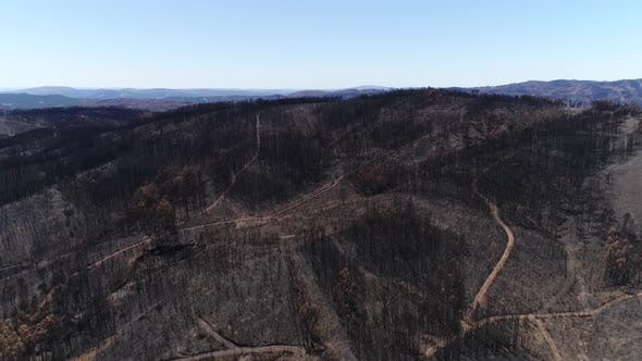 Thumbnail for Panoramic View of Burned Mountain on Summer