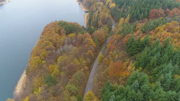 Thumbnail for Aerial View of Forest Highway Road Near Big Lake in Bulgaria. Golden Tree Tops in Scenic Autumn