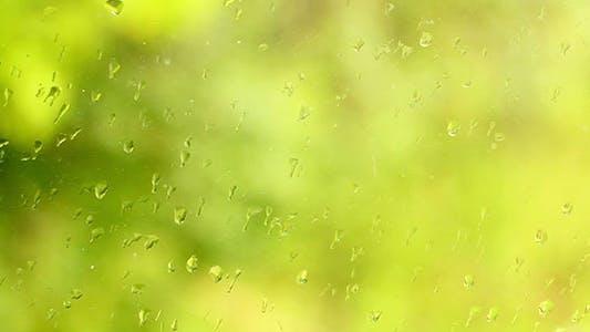 Thumbnail for Rain Drops On The Window