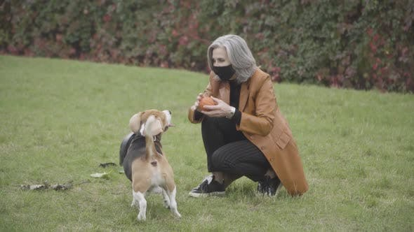 Positive Senior Caucasian Woman Throwing Ball To Dog in Spring or Autumn Park