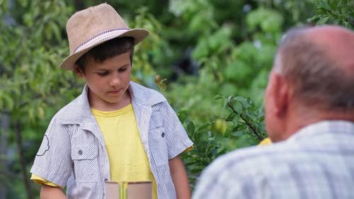 Childhood Cute Male Child Helping His Grandfather Beekeeper Paints Hives with Paint While Relaxing