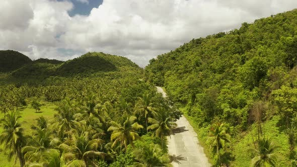 Cover Image for The Road on Siargao Island, Philippines. Aerial View on the Beautiful Scenery Landscapes.