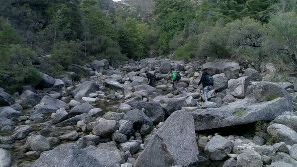 Thumbnail for Travelers Young People with Dog Are Trekking in River Forest Climbing Up Huge Rocks