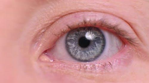 pupil and iris in the eye closeup. female eye