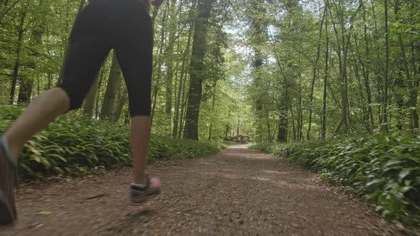 Thumbnail for Tracking Shot of Forest Trail and a Woman Sprinting Along the Path