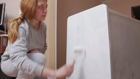 Furniture Restoration Paints