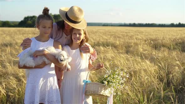 Thumbnail for Happy Family Playing in a Wheat Field