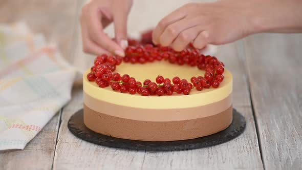 Thumbnail for Triple Chocolate Mousse Cake Decorate with Fresh Berries