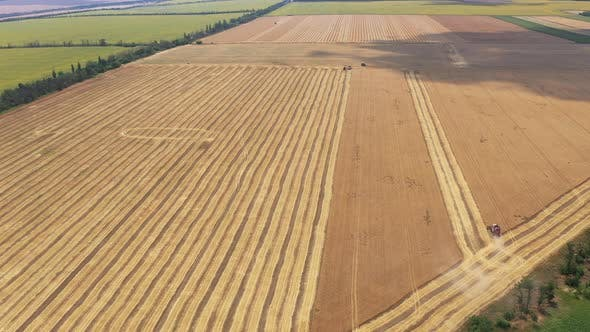 Thumbnail for Aerial View Of The Collection Of The Wheat Harvest.