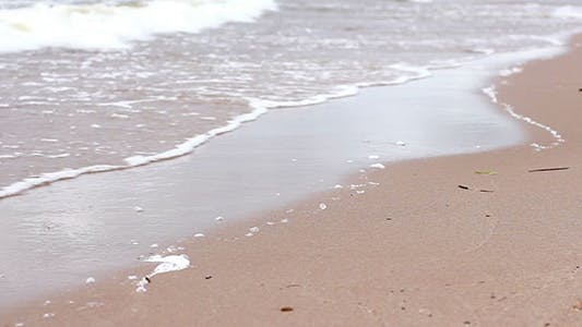 Thumbnail for Seashore