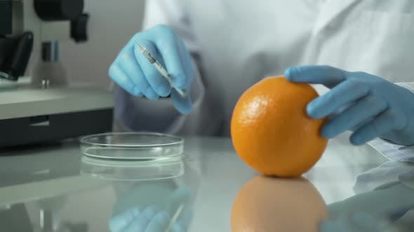 Thumbnail for Cosmetologist Extracting Essential Oils From Orange, Citrus Vitamin Products
