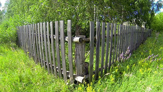 Thumbnail for Wooden Fence And Trees