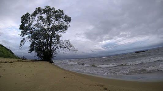 Stormy Seashore