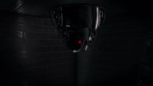 Recording surveillance camera
