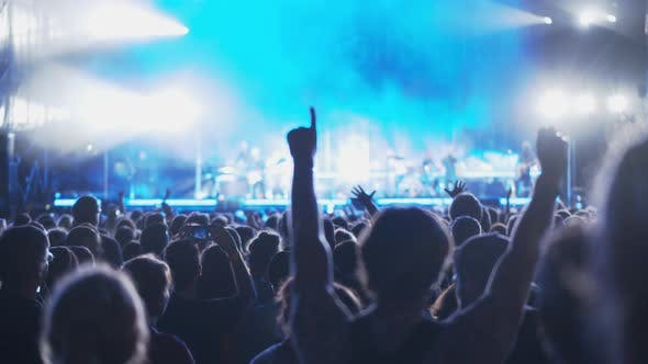 A concert audience