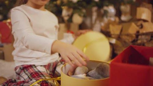 Girl Getting Stuffed Hare as Gift