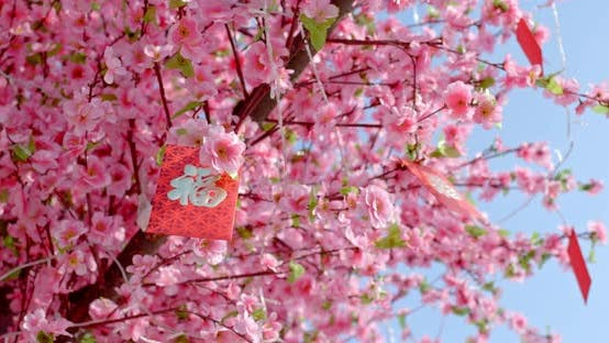 Thumbnail for Peach Blossom with Red Packet Words Means Luck