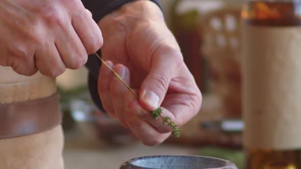Thumbnail for Hände des männlichen Chefs Entfernen Blätter von frischem Thymian