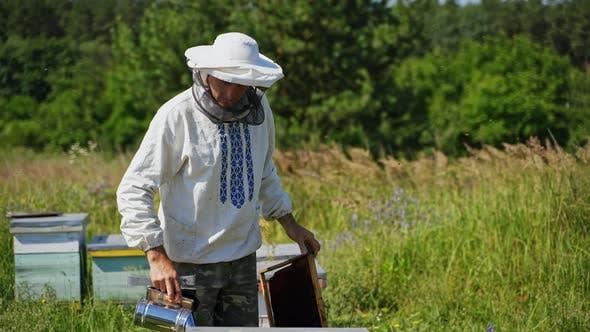 Beekeeper's work in summer