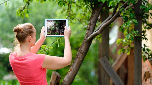 Cover Image for Young Woman Taking Pictures Of Nature Scenes