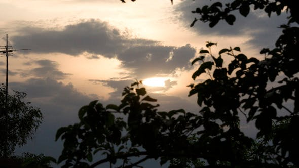 Thumbnail for Evening Nature Scene With Trees And Sky
