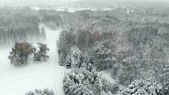 Thumbnail for Aerial View of Snowy Winter Park
