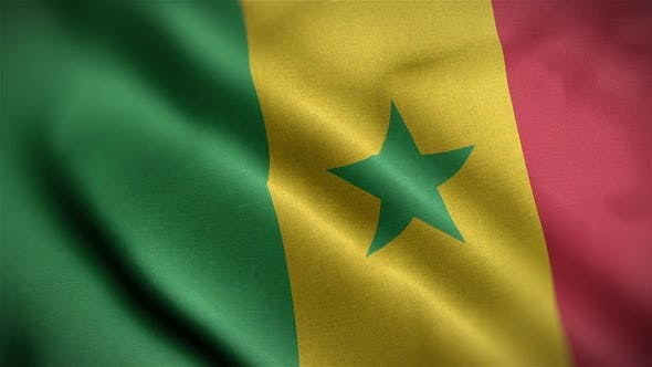 Thumbnail for Senegal Flag Closeup Blowing In Wind