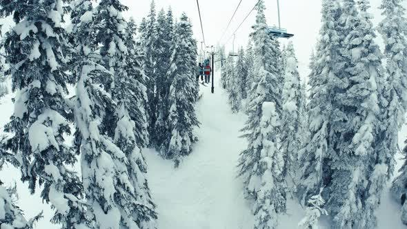 Thumbnail for Picturesque Winter Mountains Chairlift Ride In Snowy Trees