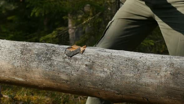 Thumbnail for Male Tourist Chopping Wood With An Axe. Wood Sawdust Fly To The Sides