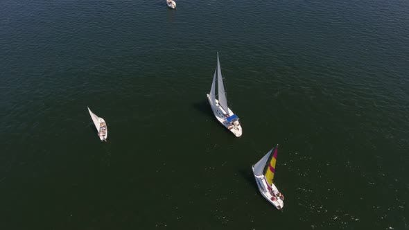 Thumbnail for Aerial Shot of One-mast Yachts Competing in the Dnipro River on a Sunny Day