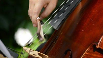 Playing Cello or Violoncello