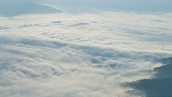 Thumbnail for Morning Fog