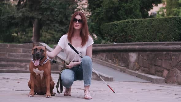 Thumbnail for Guide Dog Helping Blind Woman in Park