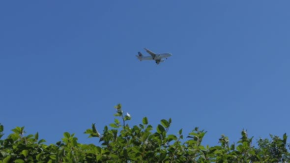 Thumbnail for Canadian Airliner Flying Over Plants