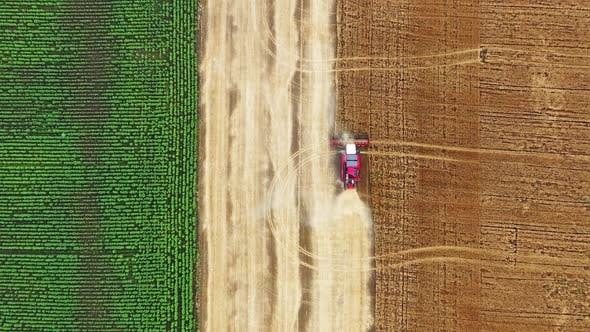 Thumbnail for Top View of Combine on Harvest Field