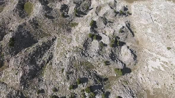 Thumbnail for Sparse Trees On Arid Stony Mountain Surface