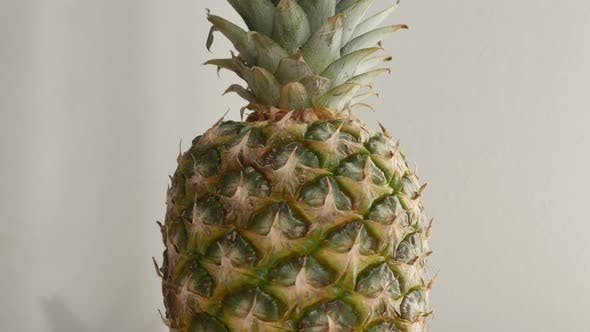 Thumbnail for Ananas comosus on white background  4K 2160p 30fps UltraHD tilting   footage - Whole fresh pineapple