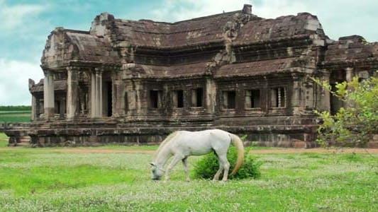 Thumbnail for Tourists Climbing Angkor Wat3
