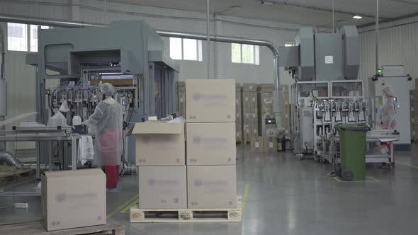 Thumbnail for Wide Shot of Industrial Manufacturing Site with Employees Working in Face Masks. Factory Producing