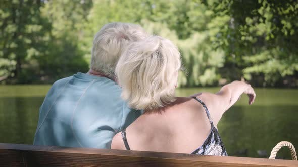 Thumbnail for Back View of a Happy Mature Couple Sitting on the Bench Near the River